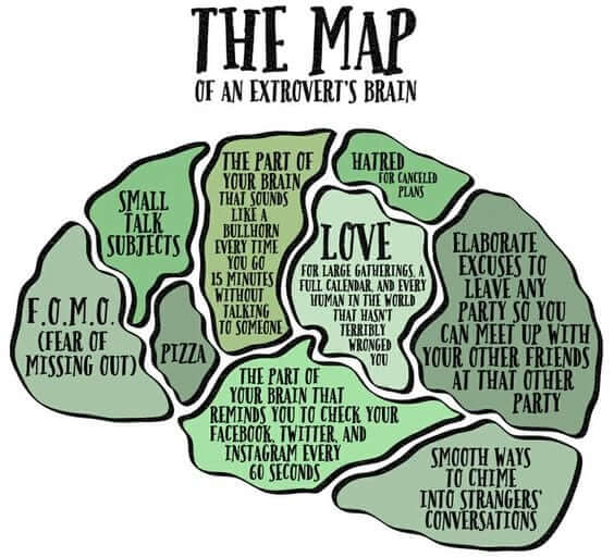 extrovert brain map