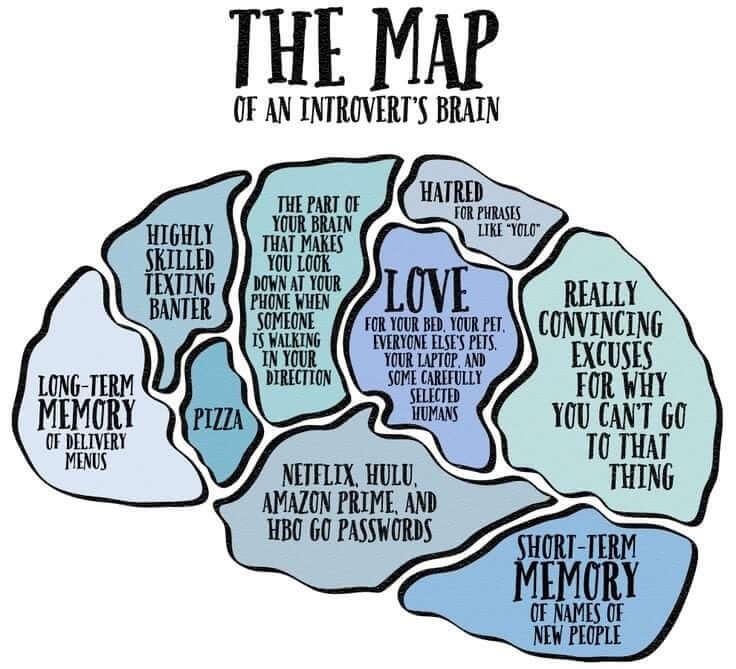 introvert-brain
