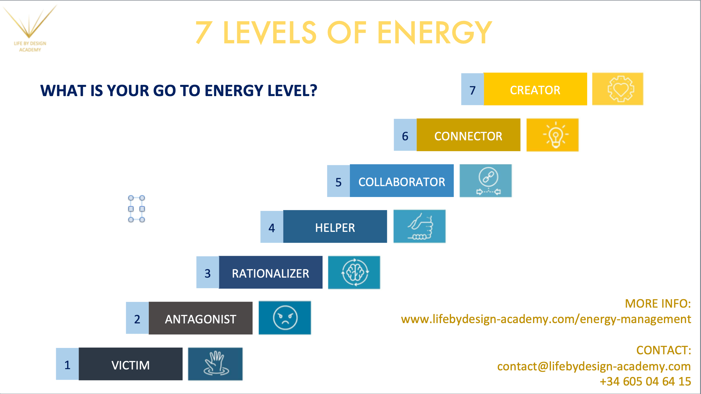 7 Levels of Energy Infographic